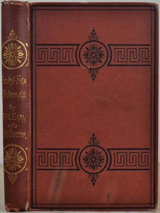 SOUTH-SEA BUBBLES. By the Earl and the Doctor. George R. C. Pembroke, G. H. Kingsley
