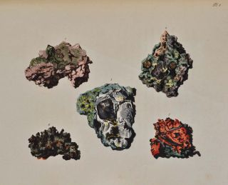 SPECIMENS OF BRITISH MINERALS SELECTED FROM THE CABINET OF PHILIP RASHLEIGH.