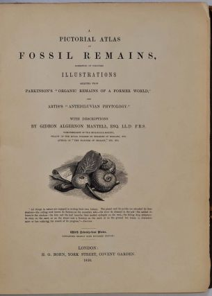 A PICTORIAL ATLAS OF FOSSIL REMAINS, Consisting of Coloured Illustrations Selected from Parkinson's ORGANIC REMAINS OF A FORMER WORLD, and Artis's ANTEDELUVIAN PHYTOLOGY.